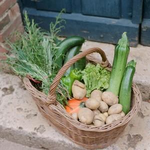 legume-chateau-activites-bouthonvillier